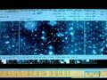 Programme 3: Black Holes