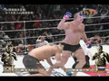Fedor Emelianenko vs Hong-Man Choi