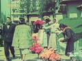Romania in anii marelui razboi - 05. Regimul Antonescu