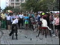 Key West Carnival With Trained Cats, Mallory Square, Florida, USA