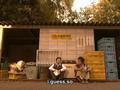 Nobuta Wo Produce-ep 6