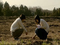Boku wa Imoto ni koi o suru-We Looked Like Giants