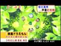 Horikita Maki - Mezamashi 080121