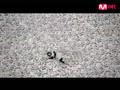 Epik High- Love Love Love [MV]