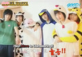{BIF} Battle in Dormitory[eng subbed]