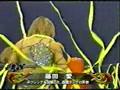 ARSION - 2001-11-25 - Azumi Hyuga vs Ai Fujita