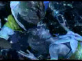 Final Fantasy X - Macalania