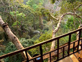 Zipping in Laos 2