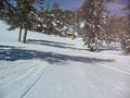 Snowboard bajando Cascade