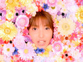 Tanpopo - BE HAPPY ~Koi no Yajirobee~