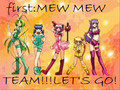 Tokyo Mew Mew VS Sailor Moon
