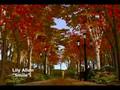 "Lily Allen - ""Smile"" in Simlish"