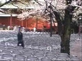 Yasukuni, Tokyo