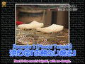 [DTFS] Downtown's Gaki no Tsukai ya Arahende - Absolutely Tasty 3: Taiyaki