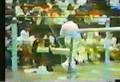 1978 China Cup Documentary.avi
