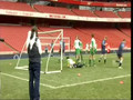 my goal at the emirates stadium