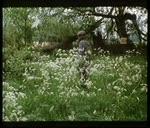 Das Auge der Nadel (1981)