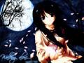 Kiss me Kill me - Anime