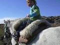 Emma a caballo por la montaña