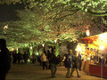 Sumida Park, Asakusa