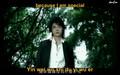 Wo You Wo De Young (I Have My Youth) Fahrenheit (Fei Lun Hai)