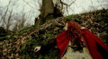 Xandria - Ravenheart.divx