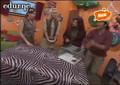 edurne y sus bichos 23/01/2008
