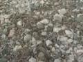 AΛΕΠΟΧΩΡΙ BEACH