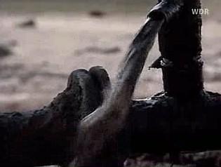 Blut und Oel - Die Kriege um das schwarze Gold