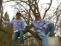 Everybody (Backstreets Back)-Music Video