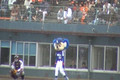 2008030104 opening pitch