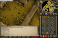 Runescape Total Boredness 2!