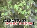 Bring Me To Life (videoke)
