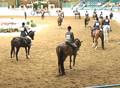 2007 Youth National Championship - Class 301 Arabian Hunter Pleasure JTR age 14-17