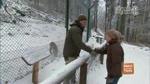 17 Der Luchs im Schnee