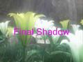 Final Shadow