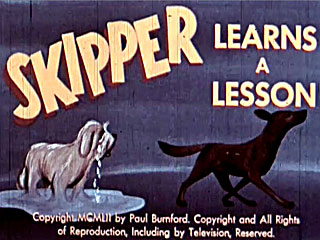 Skipper Learns A Lesson