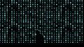 the GazettE - Shadow VI II I (PV) [DVD]