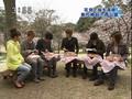 Cherry Blossom Picnic - Niji Goji (4/4/08)