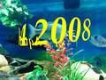S.F Aqua 2008 a