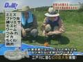 D No Arashi: Ohno + Nino Fishing