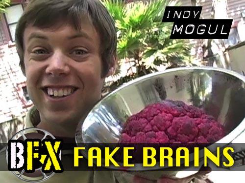 Backyard FX 7: Fake Brains