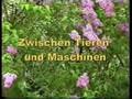 Medien Hr.Schöpker's Videos