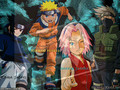 Team7 We belive