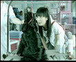 Jay Chou - M-zone CM Pet