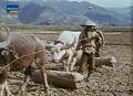 Documental - La Guerra Fria: Vietnam [Docurip][TVrip].avi
