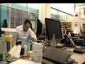 Veoh NY Office