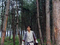 Chinese Paladin 01 (English Subtitle)