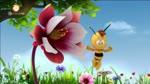 45 Majas Blume