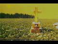 Gackt -- you break my heart--+ Gackt's Requiem